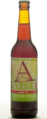 Belgian Ale, Very Low Gluten Beer.