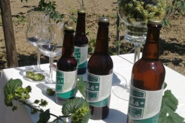 Birra Euka Versilgreen